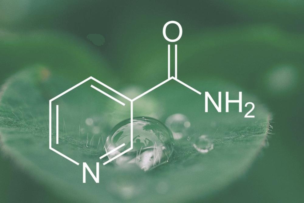 Kosmetyki z niacynamidem - jak działa witamina B3